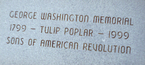 Tulip Popular Tree Marker at the Harry S. Truman Library, which commemorated the 200th year memorial anniversary of the death of President George Washington